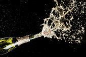 Celebration and holiday theme. Champagne splashes on black background.