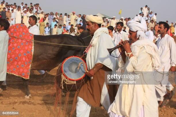 Celebrations at start of Bull Race