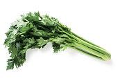 Celery, full length