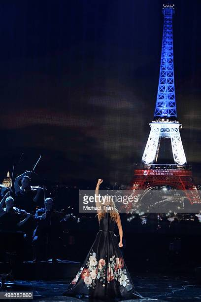 Celine Dion performs onstage at the 2015 American Music Awards at Microsoft Theater on November 22 2015 in Los Angeles California