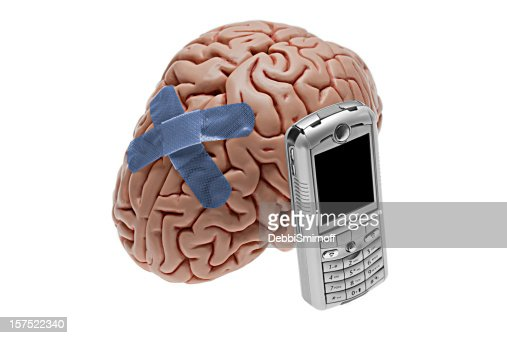 Radiation from mobiles may lead to brain damage