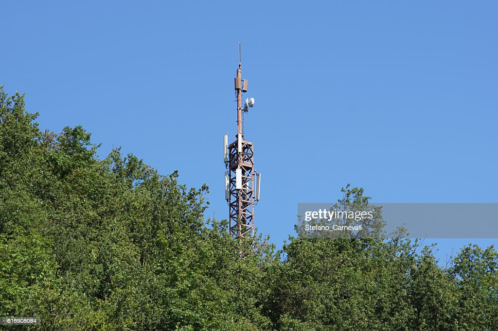 cell tower n the woods : Stock Photo