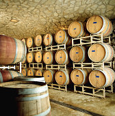Cellar in winery
