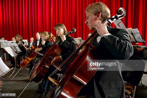 Cellists Performing in an Orchestra