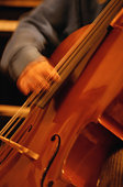 Cello Player Detail