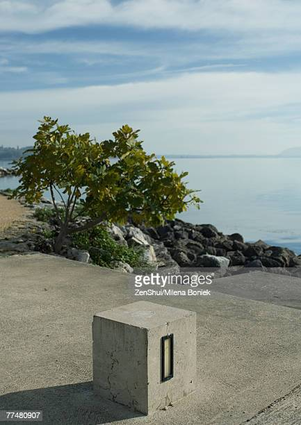 Cement block near edge of lake