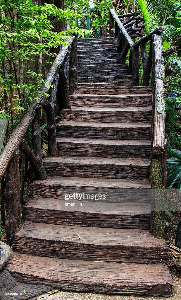 Cement stair in garden. : Stock Photo