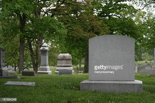 A cemetery and tombstone in the daylight