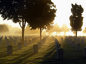 National cemetery in the fog on a bright morning