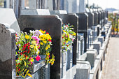 Cemetery tombstones and flowers