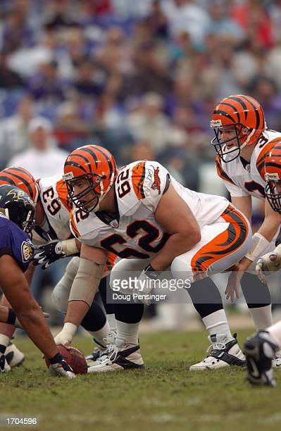 Center Brock Gutierrez of the Cincinnati Bengals prepares to make the snap to Quarterback Jon Kitna during the NFL game against the Baltimore Ravens...
