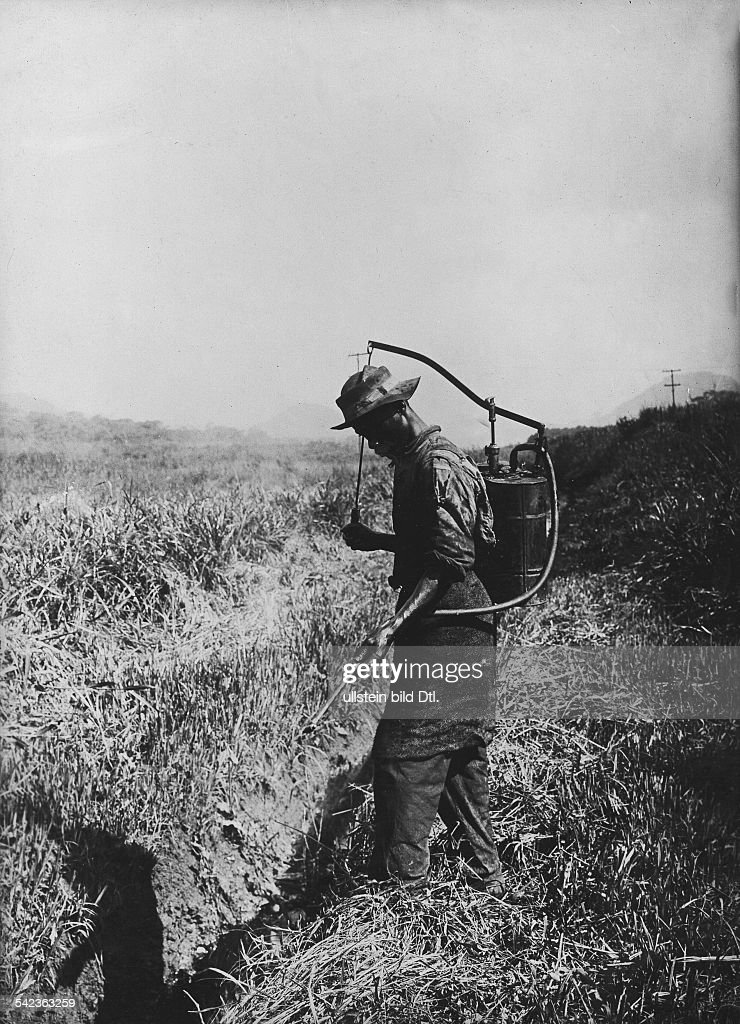 Central America construction of the Panama Canal AfroAmerican spraying insecticides to kill mosquitos date unknown around 1913 photo by Jacques Boyer
