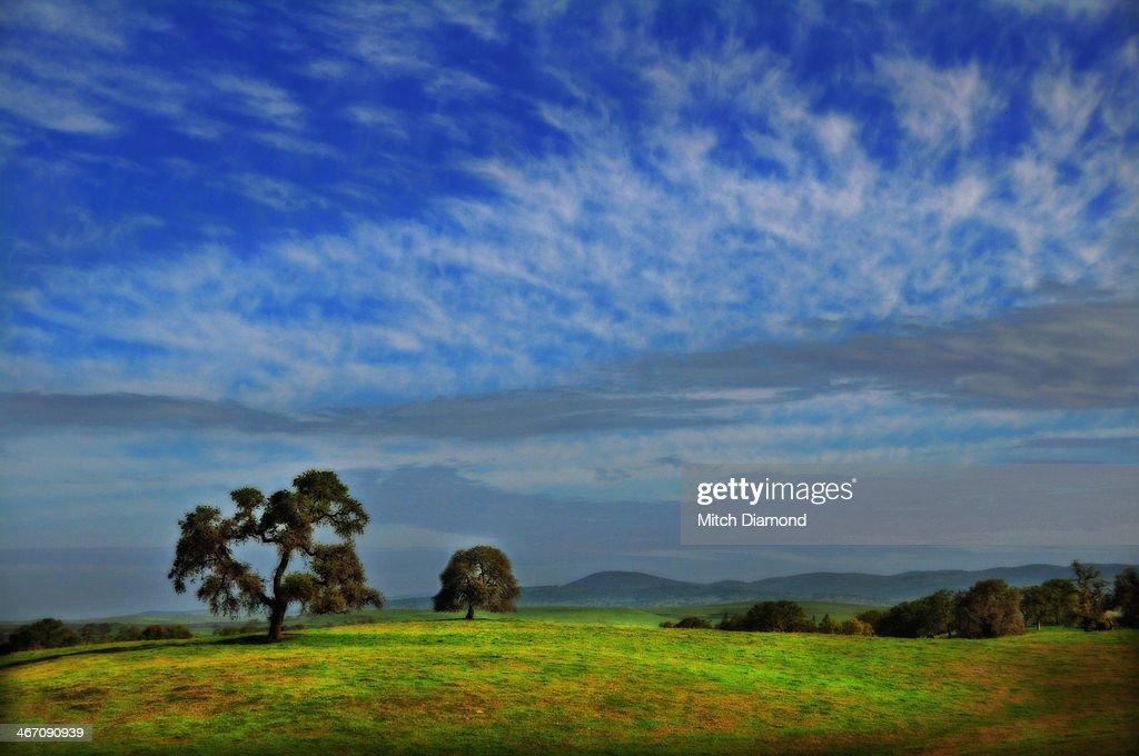 Central California landscape