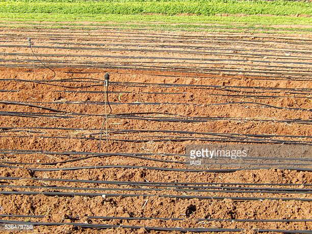 Central Israel agricultural land and irrigation