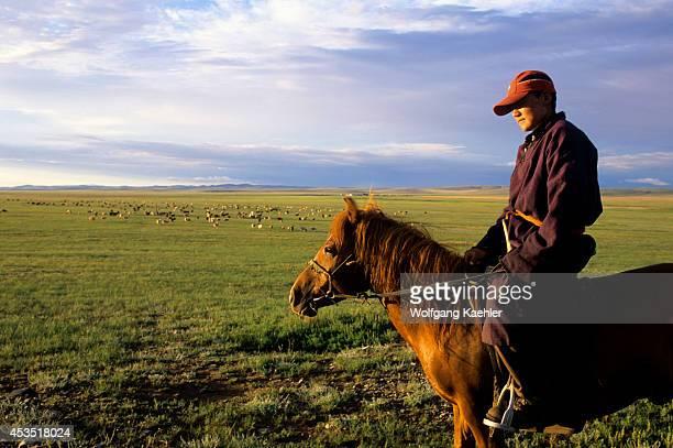 Central Mongolia Near Karakorum Grasslands Local Man On Horseback