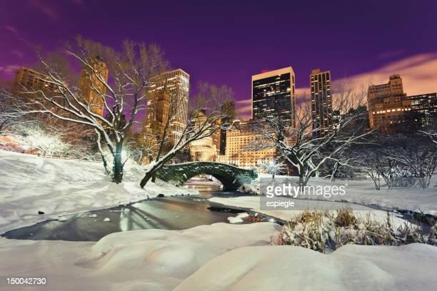Central Park di notte in inverno, New York