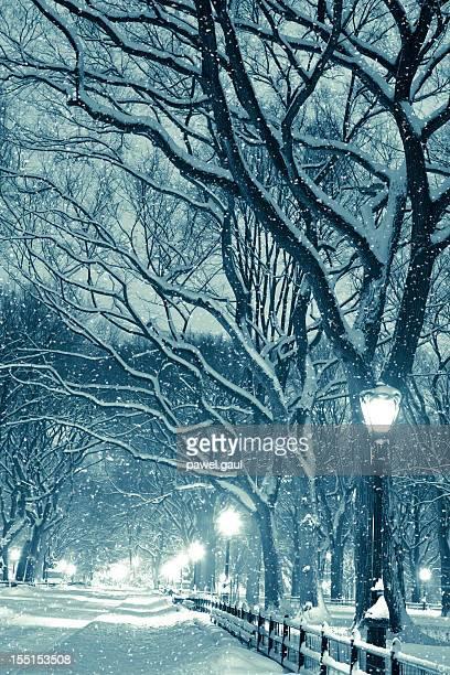 Central park de nuit pendant une tempête de neige