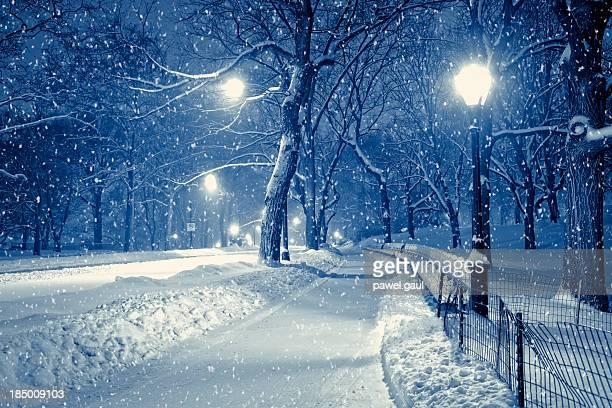 Central park di notte durante la tempesta di neve