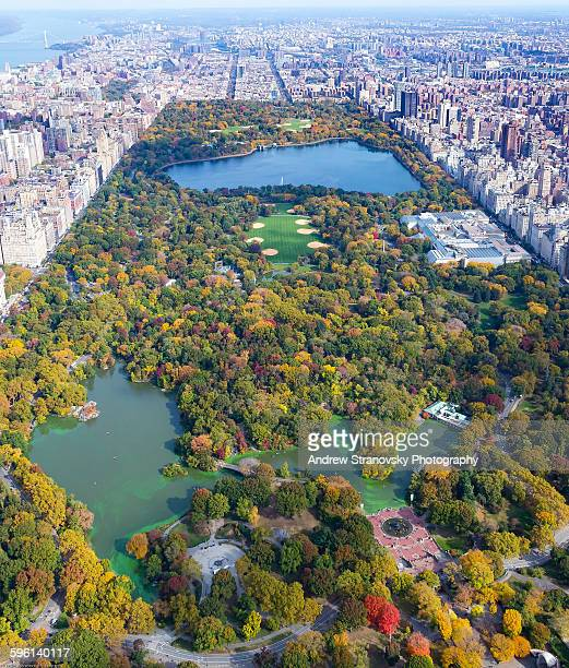 Central Park in Autumn Looking North