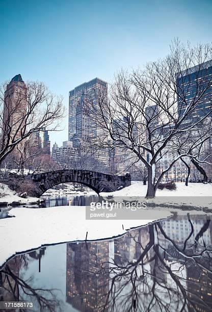 冬のセントラルパーク
