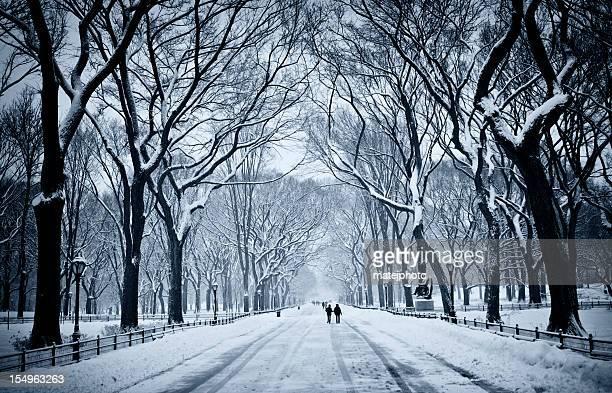 セントラルパークモール雪と風