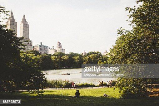 Central Park Over Looking Towers