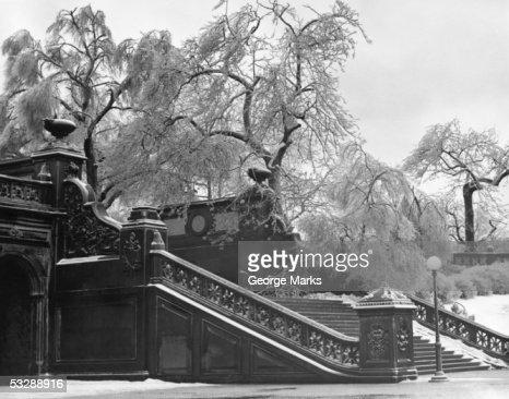 Central Park : Stock Photo