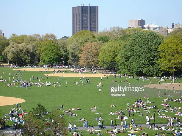 Central Park: The Great Lawn