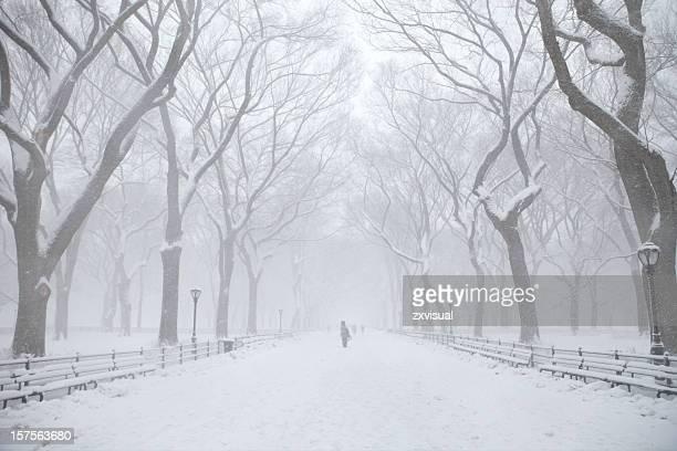 Central Park l'hiver au centre commercial