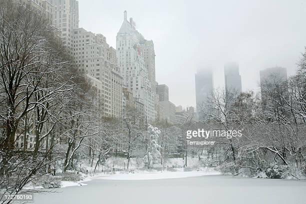 Central Park Winter Wonderland