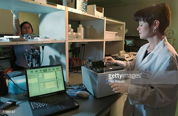 Cepheid scientist Linda Western loads a Smart Cycler machine with samples October 24 2001 at the company's Sunnyvale California headquarters The...