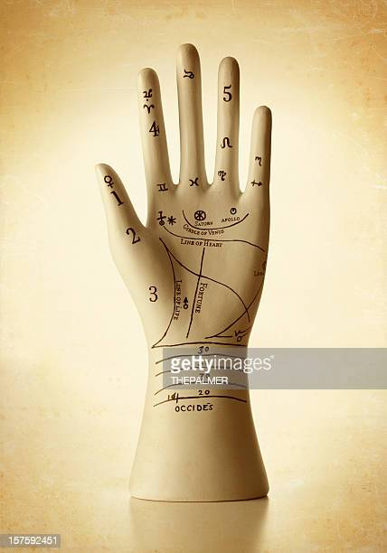 Ceramic Phrenology hand