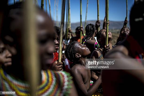 Ceremonial reeds are carried by South African maidens during the Reed Dance ceremony on September 5 2014 at the eNyokeni Royal Palace in Nongoma in...