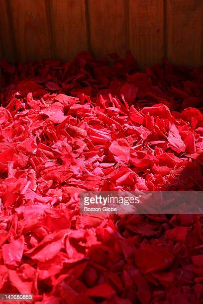 A ceremony was held at the Coast Guard base onboard Coast Guard Cutter Juniper to show the 15 million rose petals that will be taken by boat and...