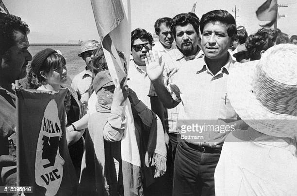 Cesar Chavez Director of the United Farm workers raises his hand as he pleads with his pickets 'to be peaceful' after he had invited them to test the...