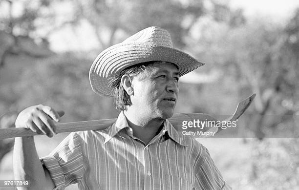 Cesar Chavez founder of United Farm Workers holds a shovel across his shoulders while working in the community garden at La Paz California 1975