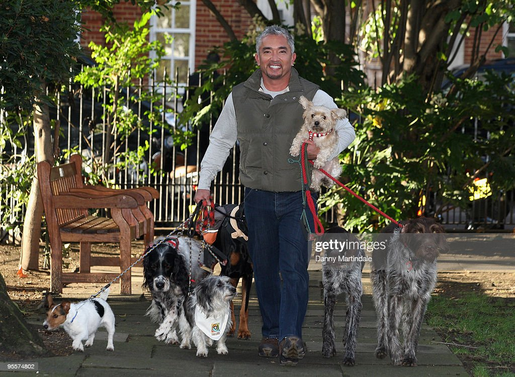 Cesar Millan attends photocall to launch his UK tour at Soho Hotel on November 25 2009 in London England