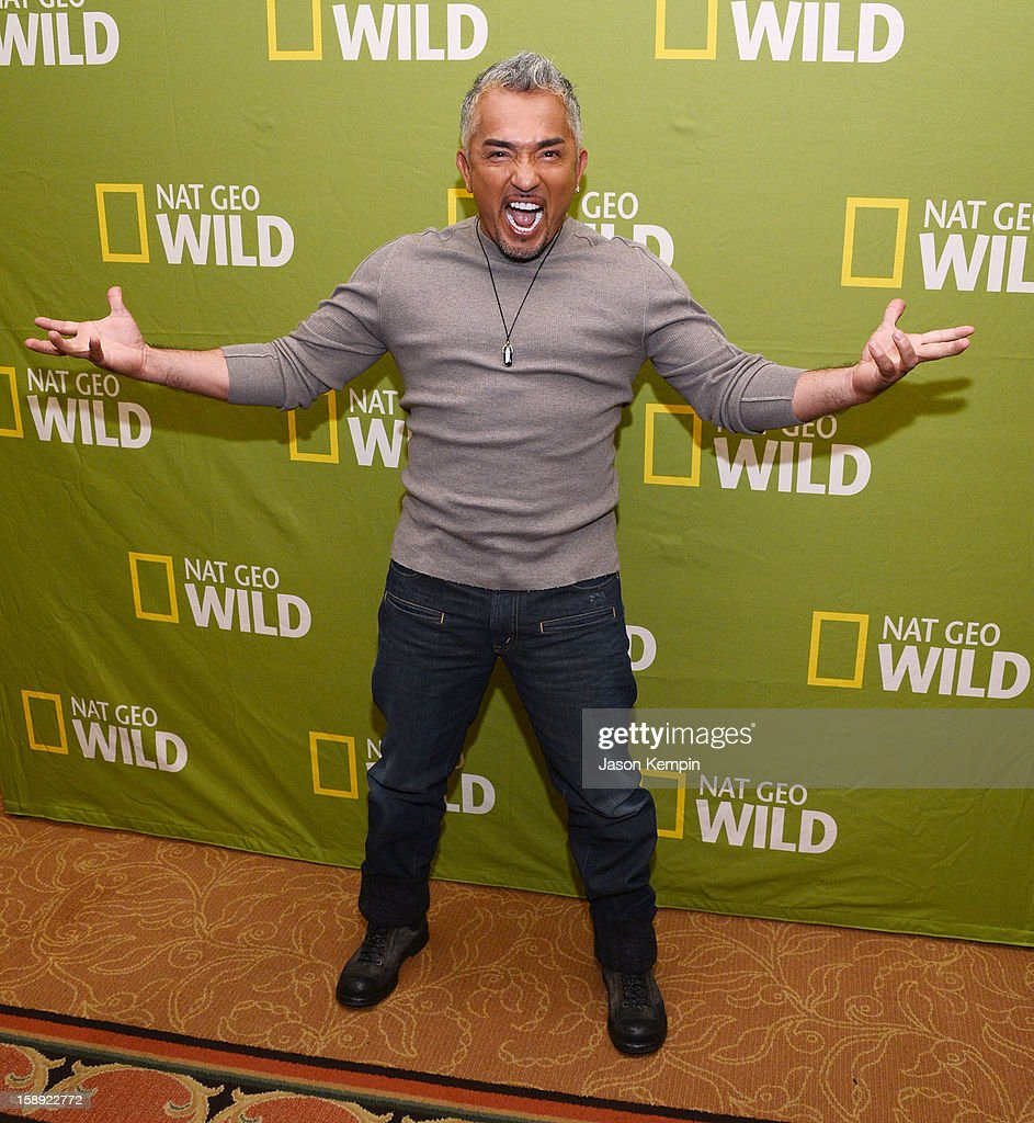Cesar Millan attends the National Geographic Channels' '2013 Winter TCA' Cocktail Party at the Langham Huntington Hotel on January 3, 2013 in Pasadena, California.