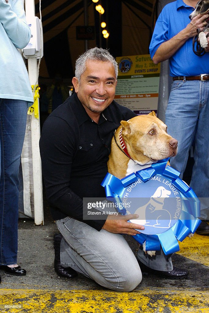 Cesar Millan attends the North Shore Animal League America's Global Adoption Extravaganza on May 2 2009 in Port Washington New York