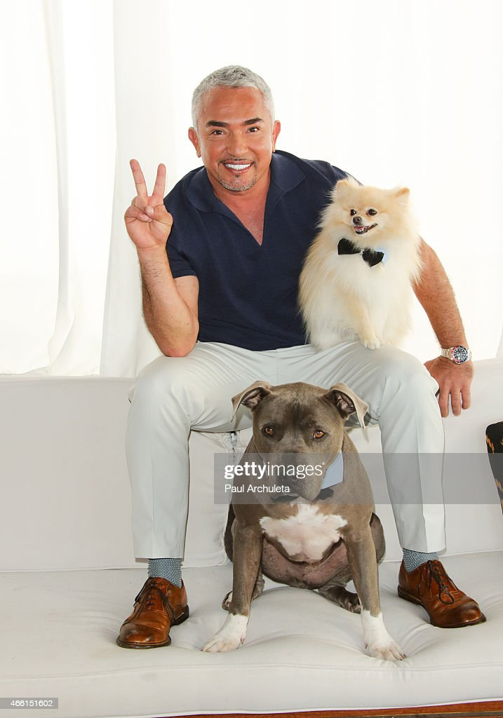 Cesar Millan celebrates season 2 of 'Cesar 911' on Nat Geo Wild at SkyBar at the Mondrian Los Angeles on March 13 2015 in West Hollywood California