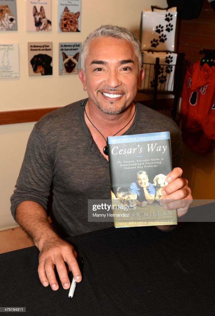 Cesar Millan hosts a pet adoption event at the Humane Society of Greater Miami on February 26 2014 in Miami Florida