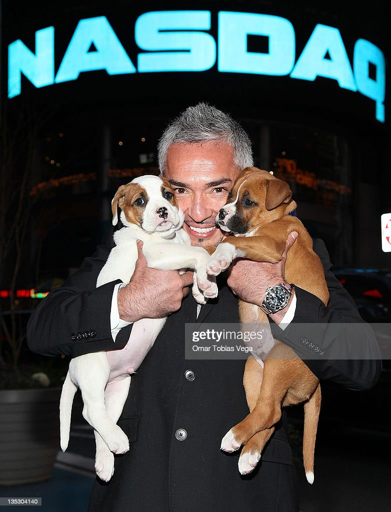 Cesar Millan in Times Square after the NASDAQ closing bell ceremony on December 8 2011 in New York City