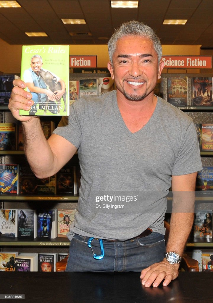 Cesar Millan signs copies of his book 'Cesar's Rules Your Way To Train A WellBehaved Dog at Barnes Noble on October 12 2010 in Huntington Beach...
