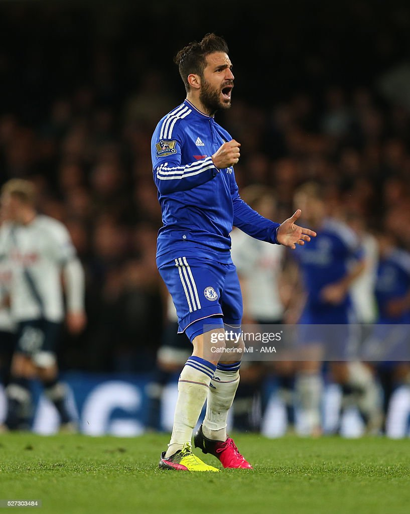 Cesc Fabregas of Chelsea celebrates after Gary Cahill of Chelsea scores to make it 1-2 during the Barclays Premier League match between Chelsea and Tottenham Hotspur at Stamford Bridge on May 2, 2016 in London, England.
