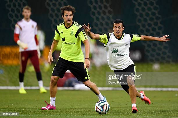 Cesc Fabregas of Spain duels for the ball with Pedro Rodriguez during a training session of the Spain National Team at the Robert F Kennedy Stadium...