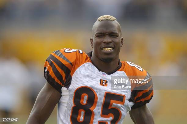 Chad Johnson of the Cincinnati Bengals looks on during the NFL game against the Pittsburgh Steelers on September 24 2006 at Heinz Field in Pittsburgh...