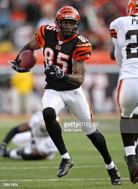 Chad Johnson of the Cincinnati Bengals runs with the ball after a reception during the NFL game against the Cleveland Browns at Paul Brown Stadium...