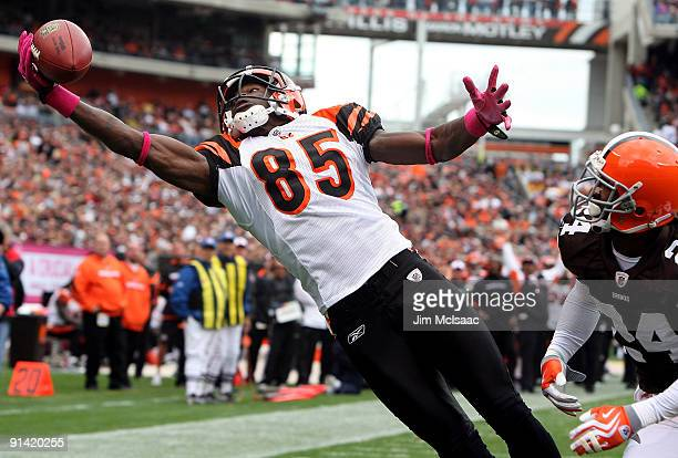 Chad Ochocinco of the Cincinnati Bengals hauls in a one handed catch for a first quatrer touchdown against the Cleveland Browns during their game at...