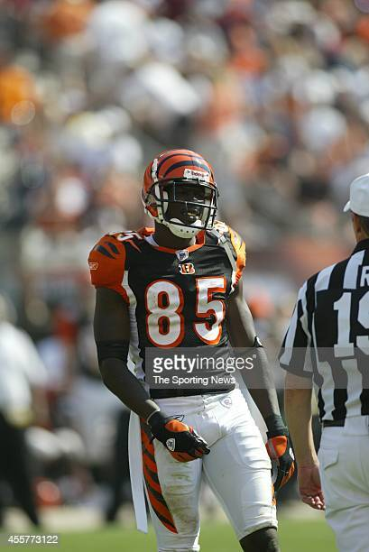 Chad Ochocinco of the Cincinnati Bengals looks on during a game against the Cleveland Browns on September 11 2005 at the Cleveland Browns Stadium in...