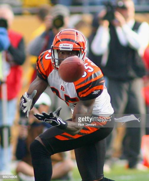 Chad Ochocinco of the Cincinnati Bengals makes a catch against the Pittsburgh Steelers at Heinz Field on November 15 2009 in Pittsburgh Pennsylvania...